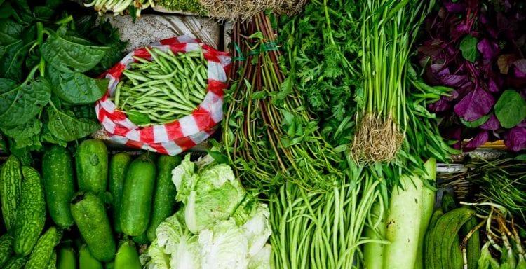 Brenda-Janschek-Recipe-Greens-Feature.jpg
